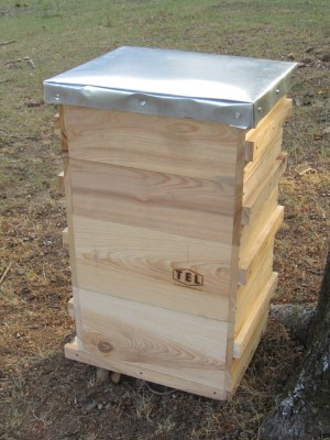 Langstroth style beehive