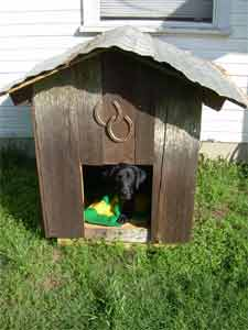 rustic cabin dog house